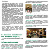 bulletin-31-juin20-web